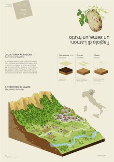 Advanced infodesign for agriculture Fagiolo di Lamon on Behance #agriculture #panel #graphic #infodesign #illustration #data #3d