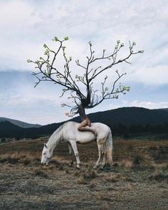 Dreamlike Photo Manipulations by Gabriel Avram
