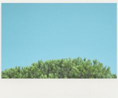Jef Claes / heat #blue #heat #jef claes