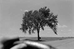 Serge J-F. Levy #inspiration #white #black #photography #and