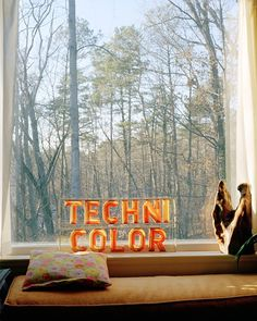 Techni Color #interior #letter #photography #technicolor #window #forest #view #typography