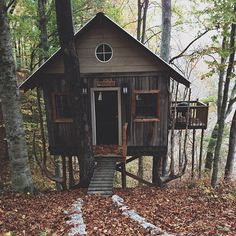 The cozy treehouse