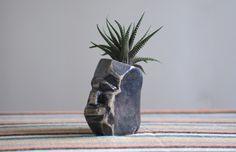 Claudia Sasaki #sculpture #plants #design #terrarium #home #heads #art #pottery