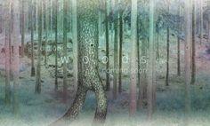 Diploo Studio #diploo #photo #woods #design #illustration