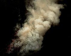 Smoke III by MD Arts on deviantART #smoke #branch #yellow #black #fire #grey