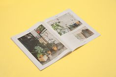 Story Annual Report, Querida #publication #editorial #paper