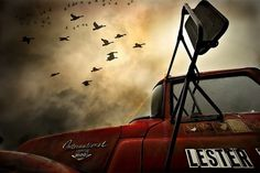 On the 1st of November | Flickr - Photo Sharing! #international #truck #birds #photography #emotive
