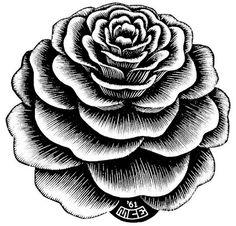 flower_1.jpg (622597) #rose