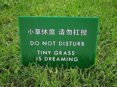 Funny Chinglish / Engrish Sign Tiny Grass is Dreaming by SignFail #sign #fail #engrish