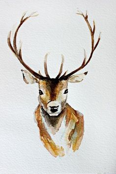 deer, painting, illustration