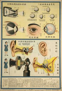 """1933: Chinese """"Understanding the human body"""" Public Health Posters"""