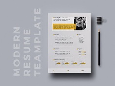 Free Modern CV Template in Indesign File Format