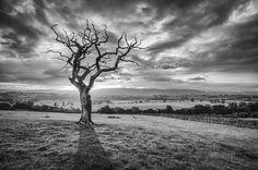 Landscape Photography #inspiration #photography #landscape