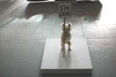 Jonas Eriksson » Every Reason to Panic #taxidermy #maltese #photography #puppy #art #death #dog