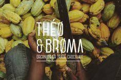THÉO & BROMA on Behance #chocolate #logo #fair #trade