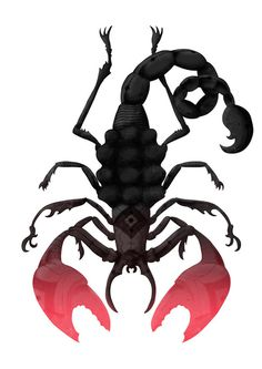 Escorpião by Estúdio Self #bug #claws #scorpion #insect #illustration