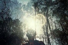 Featured Photography Portfolio – Ana Cabaleiro | 01 Magazine #hush #cabaleiro #fade #nature #arbors #ana #trees