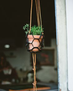 designsponge diy leather plant hanger 3 #plant