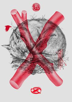 LIS on Behance #lis #red #fox #trap #moon