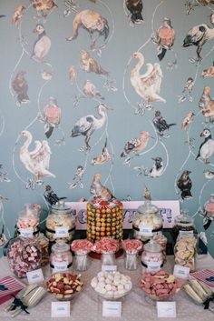 Robbins Photographic The Roost Dalston East London 177 #birds #wallpaper #pattern #sweets