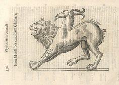 000346 #naturalism #aldrovandi #illustration #latin #ulisse #monster #drawing