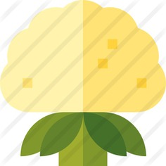See more icon inspiration related to food and restaurant, cauliflower, organic, vegan, healthy food, diet, vegetarian, vegetable, healthy and food on Flaticon.