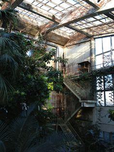 Abandoned Porn #garden #botanical #abandoned