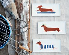 West Elm Spring 2012 #design #dogs #food #illustration #plates