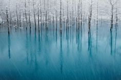 National Geographic Photography Contest Winners: 2011 - The Big Picture - Boston.com #photography #nature