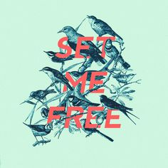 set me free by Edgar Hernandez #typography #type #illustration #birds
