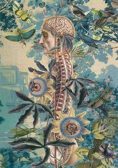 Juan Gatti. Anatomia delle emozioni e movida culturale. | Men's Reverie #juan #gatti
