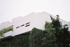BLACKHALLMANOR #architecture #grass