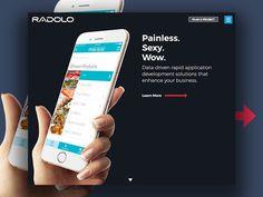 http://www.radolo.com homepage design. Custom software design and web developers New Orleans. Clean / Dark / Minimal design.