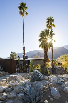 1954 Custom-Built Home Renovated by Hundred Mile House in Palm Springs, California 1