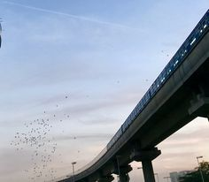 Gurgaon #landscape #rapid metro #travel