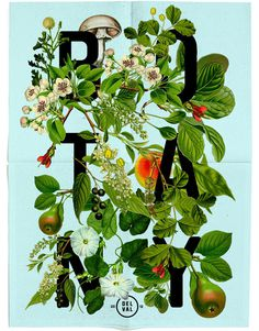Botany | Listhings #type #illustration #botany #typography