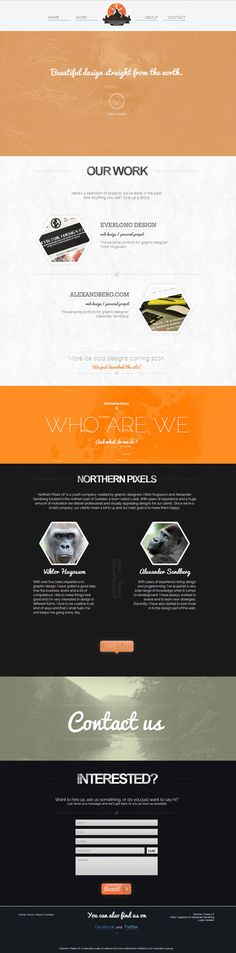 Northern Pixels site by Everlong Design #branding #site #northern #onepage #identity #monkeys #web #pixels