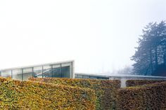Hedge House | Wiel Arets Architects | Archinect #architecture #house #hedge