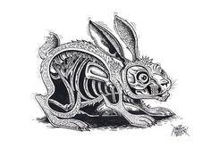 About #rabbit