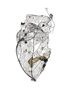 At This Rate « Studio8 Design #organic #leaf #detail #macro #close #up