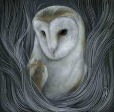 All sizes | Nocturne | Flickr - Photo Sharing! #may #dan #owl