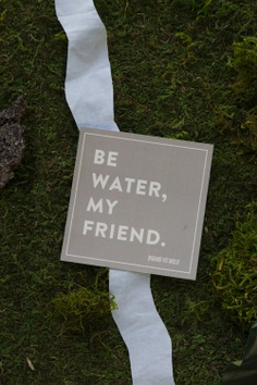 Be water in the wilderness | Image for Brand vs Wild, a survival guide for business by Jonathan David Lewis, VP of McKee Wallwork + Co. | Photographed and designed by Brittany Byrne