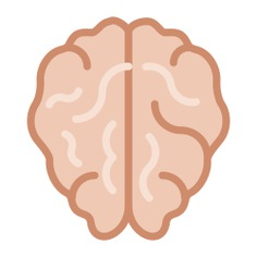 See more icon inspiration related to brain, medical, human brain, people, body organ and body part on Flaticon.