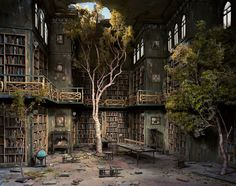 lori nix #interior #tree #ruin #photo #place #abandoned #photography #scenography #library