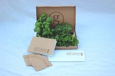 Graze on the Behance Network #jake #plants #packaging #graze #re #brand #brown #hinds #logo #green