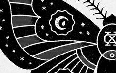 Moth_detail #moth #drawing #illustration