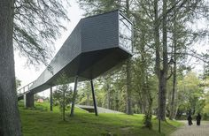 treesnakehouse-11 #architecture #house #tree