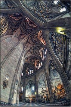 Segovia Cathedral by Gabi B