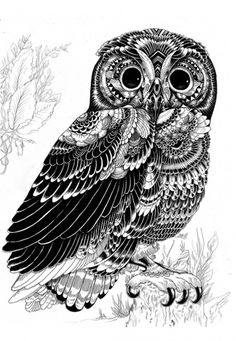 a8b293e281f126bbc6ee9c22348dd969.jpg 600×868 pixels #iain #shapes #illustration #nature #geoetric #macarthur #animal