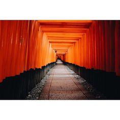 http://instagram.com/charlessabas  The beautiful alley in Fushimi Inari